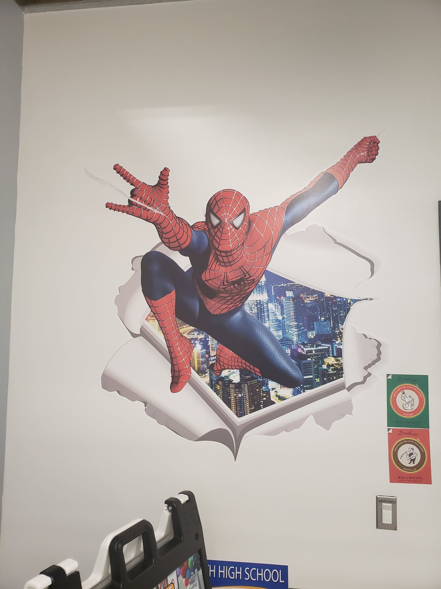 Refresh Your Office Interiors with Custom Wall Graphics by Surely Signs