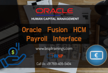 Oracle Fusion HCM Payroll Interface Training