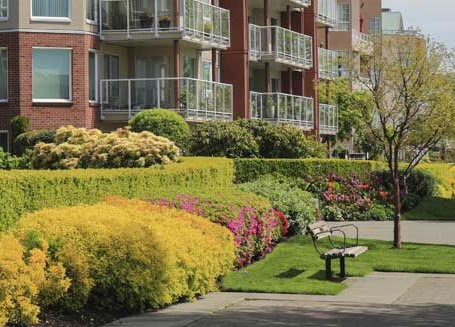 Best Residential Landscaping Services in fort worth, TX