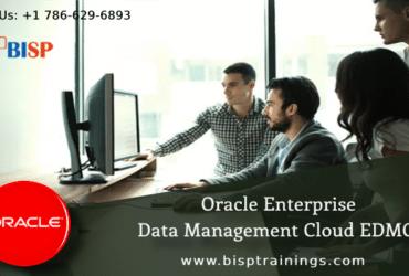 Enterprise Data Management Cloud | EPM | EDMCS | Oracle Cloud Training